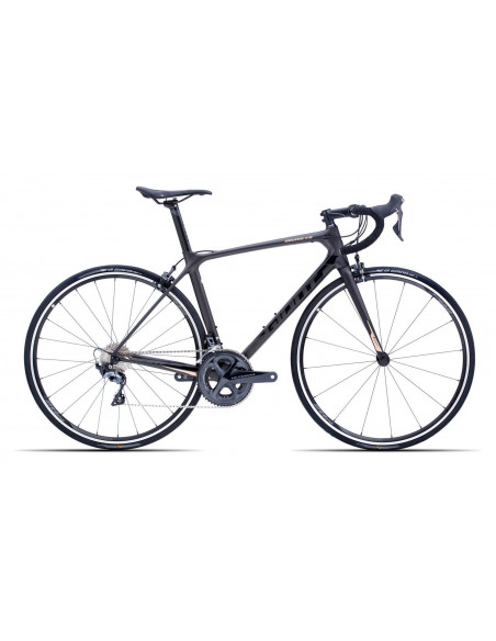 Bicicleta GIANT TCR Advanced 1 2019